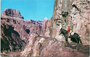 Grand Canyon, AZ -Mule back riders at viewing Zoroaster Temple