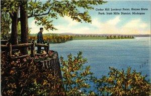 VTG Postcard Cedar Hill Lookout Hayes Park Irish Hills District 1947 Mich  112