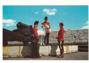 RCMP And Goat Mascot, Old Fort Henry, Kingston, Ontario, Vintage Chrome Postcard
