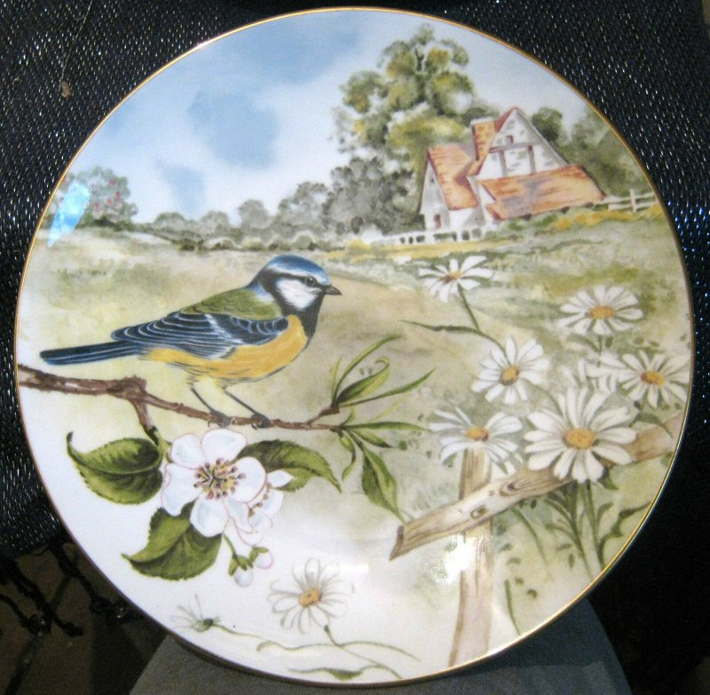 Lovely Decorative Plate Showing a Blue Tit Bird Staffordshire Bone China 7.75ins