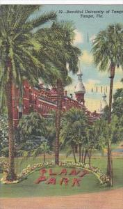 Florida Tampa Beautiful University Of Tampa
