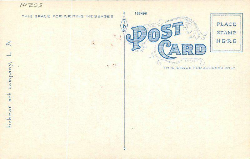 Amusement Pier Venice California 1920s Postcard Tichnor 12001