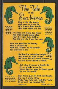 The Sea Horse - [MX-509]