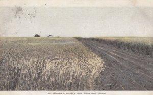 Mr Benjamin F. Holden's Farm , INDIAN HEAD , Canada , 1905