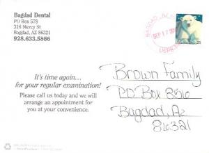 US Used Postcard #4387  Wildlife - Polar Bear. Time for a  Dental Exam