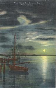 Moon Rising Over Biscayne Bay Florida Postcard Vintage Linen Uncirculated