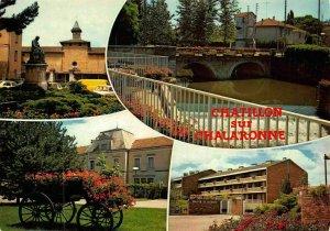 France Chatillon sur Chaloranne Ville Fleurie Statue Monument Bridge Postcard
