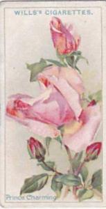 Wills Vintage Cigarette Card Roses 1926 No 47 Prince Charming