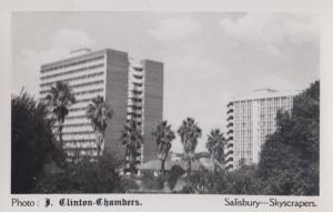 South African Salisbury Island Skyscrapers J Clinton Chambers RPC Photo Postcard