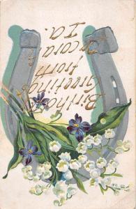 Decorah Iowa Birthday Greetings Flowers Horseshoe Postcard JD933429