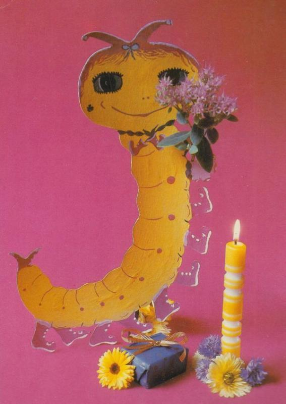 German Caterpillar With Flowers Centipede Giant Toy Germany Postcard