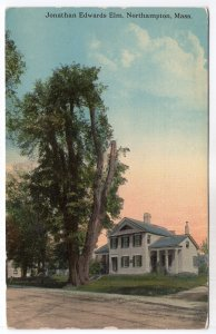 Northampton, Mass, Jonathan Edwards Elm