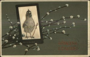 Easter - Chick Wears Military Helmet - Sword c1910 Postcard