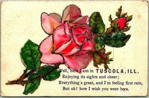 1910s TUSCOLA, Illinois Embossed Greetings Postcard Pink Rose / Glitter