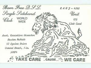 Lion - Qsl Ham Radio Card Ormond Beach - Daytona Florida FL t1573