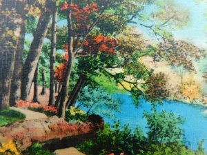 Greetings From Monett Missouri River Nature Linen Vintage Postcard