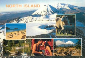 New Zealand Postcard North Island different aspects