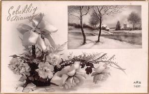 Gelukkig Nieuwjaar New Year Ribbon Roses Carnation Basket Winter Snowy Landscape