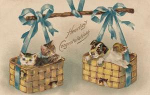 CONGRATULATIONS, PU-1910; Two Kittens & Puppies in wicker baskets