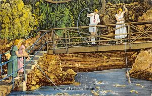 Bermuda Post card Old Vintage Antique Postcard The Devil's Hole Unused