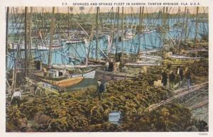 Florida Tarpon Springs Sponges and Sponge Fleet In Harbor 1938 Curteich