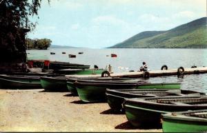 New York Woodville Canandaigua Lake Shoreline 1959