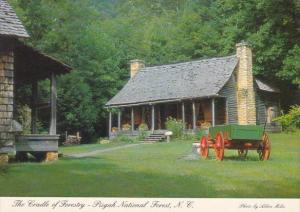 North Carolina Pisgah National Forest
