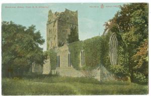 Ireland, Muckross Abbey from S. E. Killarney, early 1900s unused Postcard