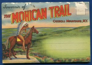 Mohican Trail Catskill Mountains New York ny linen postcard folder