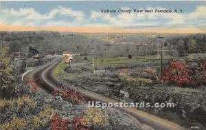 Sullivan County Ferndale NY Unused