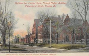 URBANA, Illinois, 00-10s; Matthews Ave., South, Natural History Bldg. U of I.