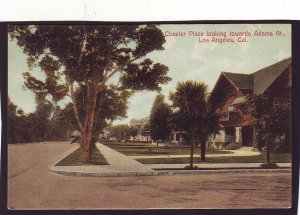 P1439 old unused postcard chester place towards adams street los angeles calif