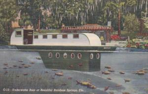 Florida Rainbow Springs Underwater Boat Curteich