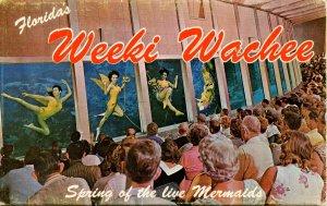 Folder - Florida. Weeki-Wachee   12 views + narrative