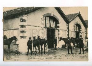 233177 FRANCE MELUN 18 Dragons Grooming HORSES Vintage RPPC