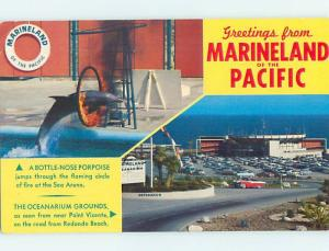 Pre-1980 OLD CARS AT MARINELAND Palos Verdes - Los Angeles California CA hn5304
