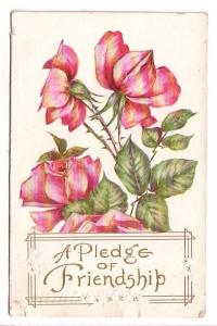 Roses with Thorns, Pledge of Friendship, Wellesey Flag Cancel