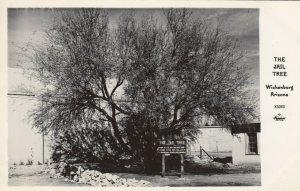 RP: WICKENBURG , Arizona , 30-40s ; The Jail Tree # 2; FRASHERS X5060