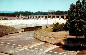 Washington Bonneville Open Spillway and Fish Ladders