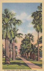 Scenic view, Stately Palms, Lower Rio Grande Valley of Texas,  PU-30-40s
