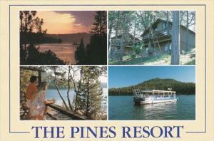 California Bass Lake In Sierra Nevada Mountains The Pines Resort Multi View