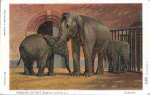 Indonesia Litho Southeast Asia Elephant 04.36