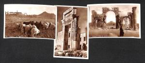 Syria Palmyra 3 vintage real photo postcards