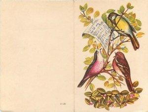 Birds singing carols greetings card