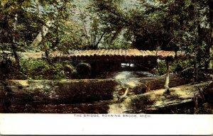 Michigan Roaring Brook The Bridge 1909