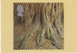 Post Card 2nd stamp 2000 Yews For the Millenium