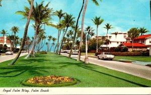 Florida Palm Beach Royal Palm Way