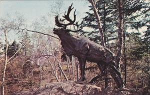 ST. JOHN'S, Newfoundland and Labrador, Canada, 1940-1960's; The Caribou, Bowi...