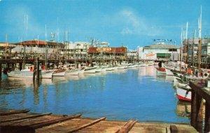 Postcard Fisherman Warf San Francisco California