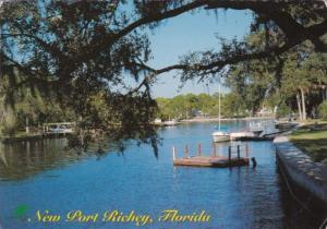 Florida New Port Richey Pithlachascootie River Scene